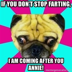 Perplexed Pug - If you don't stop farting, I am coming after you Annie!