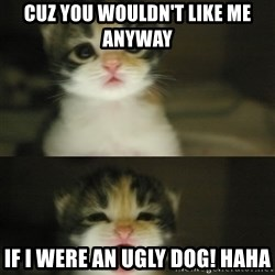 Adorable Kitten - cuz you wouldn't like me anyway if i were an ugly dog! haha