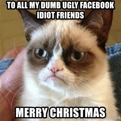 Grumpy Cat  - To all my dumb ugly FaceBook idiot friends Merry Christmas
