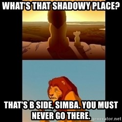 Lion King Shadowy Place - What's that shadowy place?  That's B side, Simba. You must never go there.
