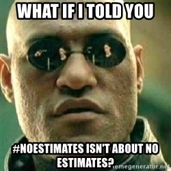 What If I Told You - What if I told you #noestimates isn't about no estimates?