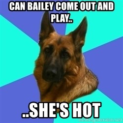 German shepherd - can bailey come out and play.. ..she's hot