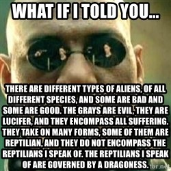What If I Told You - What if I told you... There are different types of aliens, of all different species, and some are bad and some are good. The grays are evil, they are lucifer, and they encompass all suffering. They take on many forms, some of them are reptilian, and they do not encompass the reptilians I speak of. The reptilians I speak of are governed by a Dragoness.