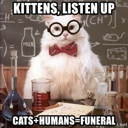 Chemistry Cat - kittens, listen up cats+humans=funeral
