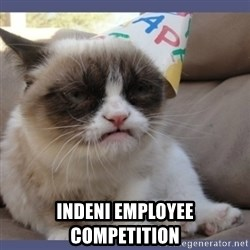 Birthday Grumpy Cat - indeni employee competition