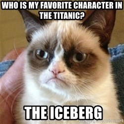 Grumpy Cat  - who is my favorite character in the titanic?  the iceberg