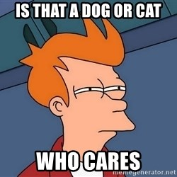Futurama Fry - Is that a dog or cat Who cares