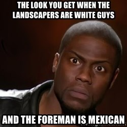kevin hart nigga - The look you get when the landscapers are white guys And the foreman is mexican