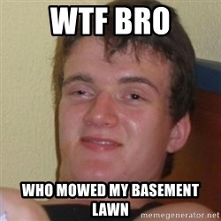 Stoner Stanley - WTF BRO WHO MOWED MY BASEMENT LAWN