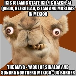 Crazy Camel lol - ISIS Islamic State ISIL/IS Daesh, Al Qaeda, Hezbollah, Islam and Muslims in Mexico  The Mayo - Yaqui of Sinaloa and Sonora Northern Mexico - US Border