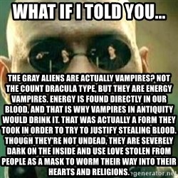 What If I Told You - What if I told you... The Gray aliens are actually vampires? Not the count dracula type, but they are energy vampires. Energy is found directly in our blood, and that is why vampires in antiquity would drink it. That was actually a form they took in order to try to justify stealing blood. Though they're not undead, they are severely dark on the inside and use love stolen from people as a mask to worm their way into their hearts and religions.