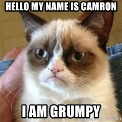 Grumpy Cat  - Hello my name is Camron I am Grumpy