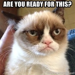 Grumpy Cat 2 - Are you ready for this?