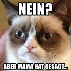Angry Cat Meme - Nein? Aber Mama hat gesagt...