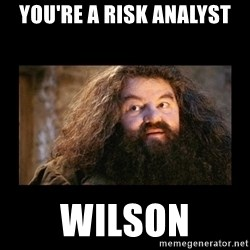 You're a Wizard Harry - You're a Risk Analyst Wilson