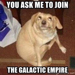 Oh You Dog - you ask me to join  the galactic empire