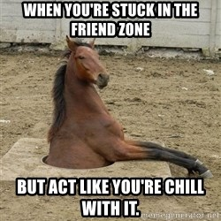 Hole Horse - When you're stuck in the friend zone But act like you're chill with it.