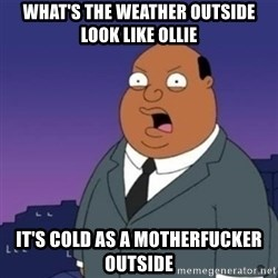 Ollie the Weatherman - WHAT'S THE WEATHER OUTSIDE LOOK LIKE OLLIE IT'S COLD AS A MOTHERFUCKER OUTSIDE