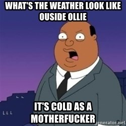 Ollie the Weatherman - WHAT'S THE WEATHER LOOK LIKE OUSIDE OLLIE IT'S COLD AS A MOTHERFUCKER