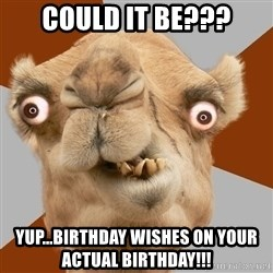 Crazy Camel lol - Could it be??? Yup...birthday wishes on your actual birthday!!!