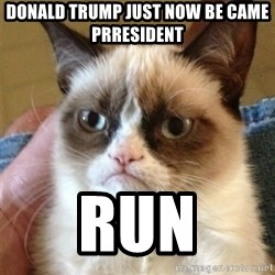 Grumpy Cat  - Donald trump just now Be came prresident  RUN