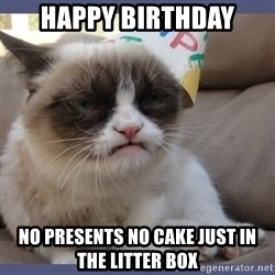 Birthday Grumpy Cat - happy birthday no presents no cake just in the litter box