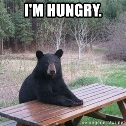 Patient Bear - I'm hungry.