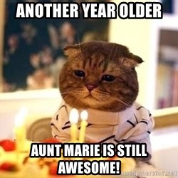 Birthday Cat - Another year older  Aunt Marie is still awesome!