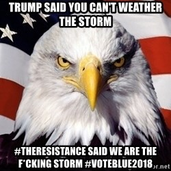 American Pride Eagle - Trump said you can't weather the storm #TheResistance said We ARE the F*cking Storm #VoteBlue2018