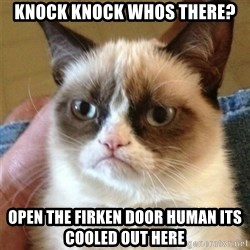 Grumpy Cat  - knock knock whos there? open the firken door human its cooled out here