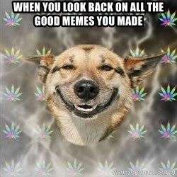 Stoner Dog - when you look back on all the good memes you made