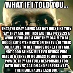What If I Told You - What if I told you... That the Gray aliens are not holy like they say they are, but instead they possess a wholly evil and a side they claim to be good (but often rests on the evil of their evil halves to get things done.) They are NOT good beings, but evil beings who needed a sense of holiness to abuse God's power. They are fully responsible for both halves' action and purposely let their evil halves lash out.