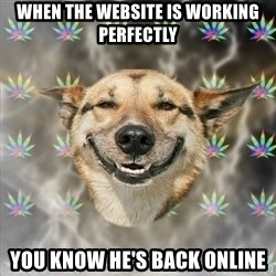 Stoner Dog - when the website is working perfectly you know he's back online