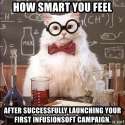 Chemistry Cat - How smart you feel After successfully launching your first Infusionsoft campaign.
