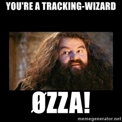 You're a Wizard Harry - You're a tracking-wizard Øzza!