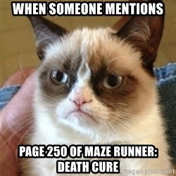 Grumpy Cat  - when someone mentions page 250 of Maze Runner: Death Cure