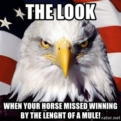 American Pride Eagle - the look  when your horse missed winning by the lenght of a mule!
