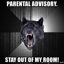 Insanity Wolf - parental advisory. stay out of my room!