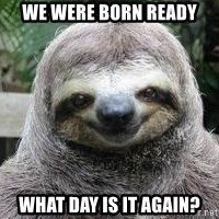 Sexual Sloth - We were born ready what day is it again?