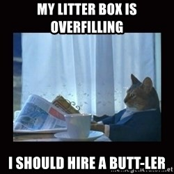 i should buy a boat cat - My litter box is overfilling I should hire a butt-ler