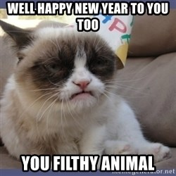 Birthday Grumpy Cat - well happy new year to you too you filthy animal
