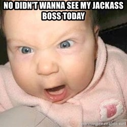 Angry baby - NO didn't wanna see my JACKASS boss today