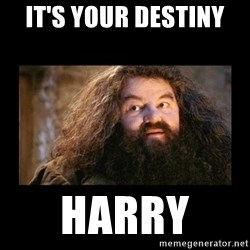 You're a Wizard Harry - It's your destiny  Harry
