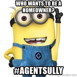 Despicable Me Minion - who wants to be a homeowner? #agentsully