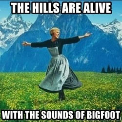 Look at all the things - The hills are alive with the sounds of bigfoot