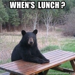 Patient Bear - when's  lunch ?
