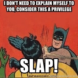 batman slap robin - i don't need to explain myself to you, consider this a privilege slap!