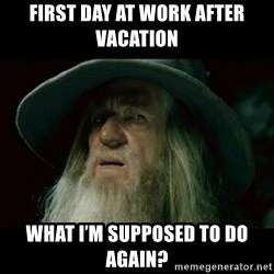 no memory gandalf - First day at work after vacation What i'm Supposed to do again?