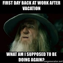 no memory gandalf - First day back at work after vacation What am I supposed to be doing again?