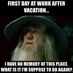 no memory gandalf - First day at work after vacation... I have no memory of this place. What is it I'm suppose to do again?